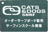 CAT&DOGS surf